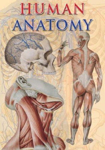 Human Anatomy (TAJ Big Books): Giovanni Iazzetti