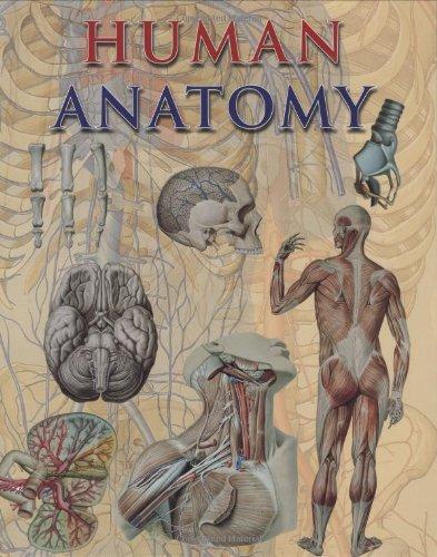 9781844061266: Human Anatomy
