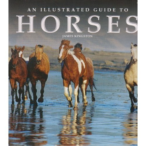 9781844061402: Illustrated Guide to Horses
