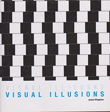 Visual Illusions: James Kingston