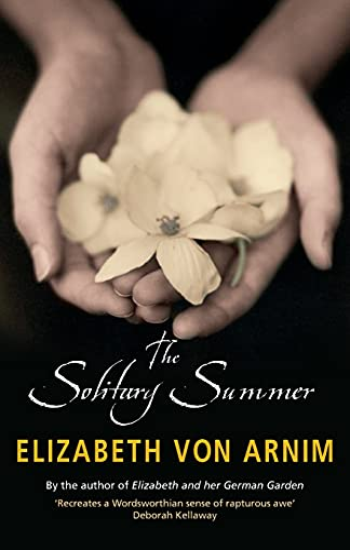 9781844082964: The Solitary Summer (Virago Modern Classics)