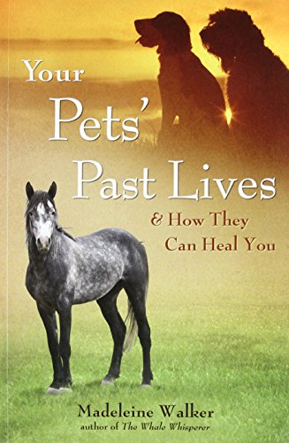 9781844095728: Your Pets' Past Lives: & How They Can Heal You