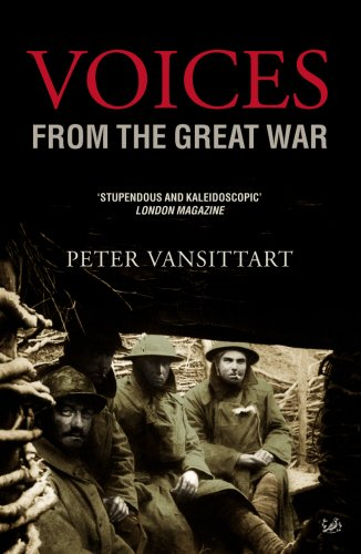 9781844134151: Voices From the Great War