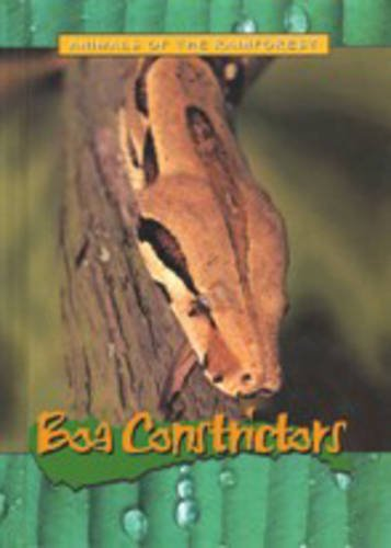 9781844210909: Animals Of The Rainforest: Boa Constrictors Hardback