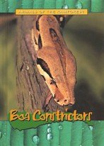 9781844210961: Animals of the Rainforest: Boa Constrictors
