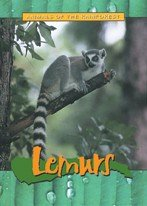 9781844211005: Animals of the Rainforest: Lemurs (Animals of the Rainforest)
