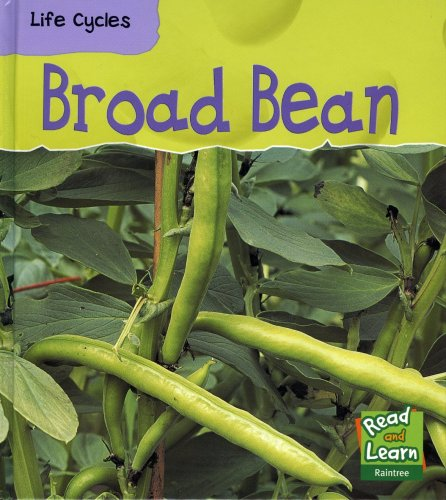 9781844212545: Broad Bean (Read and Learn: Life Cycles)
