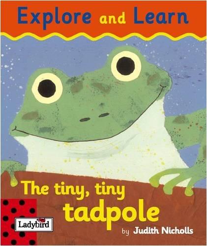 9781844224210: The Tiny Tiny Tadpole (Explore & Learn)