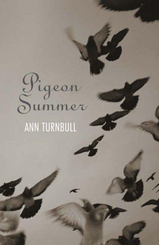 9781844281398: Pigeon Summer