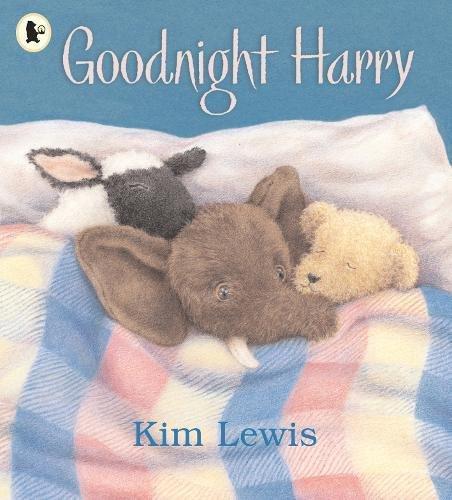 9781844285006: Goodnight, Harry