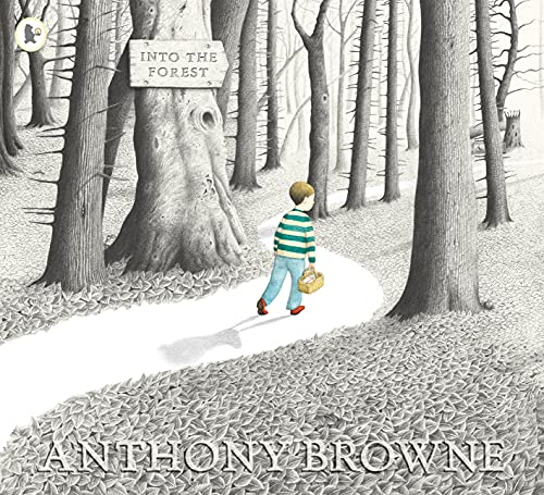 9781844285594: Browne, A: Into the Forest