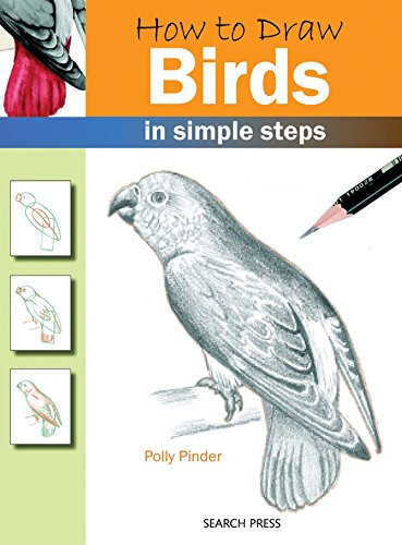 How to Draw Birds in Simple Steps: Pinder, Polly