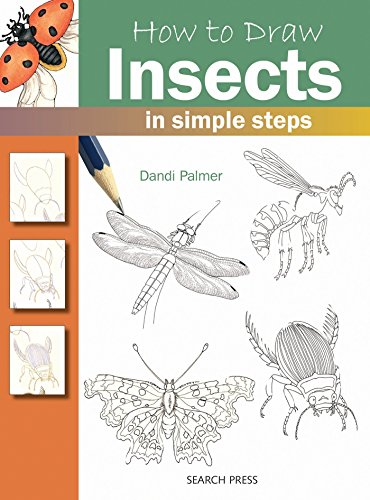 9781844484478: How to Draw Insects: in simple steps