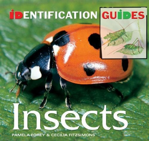 9781844519200: Insects: Identification Guide (Identification Guides)