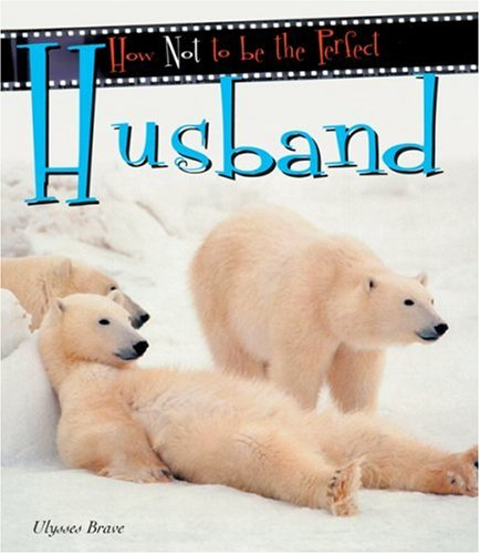 9781844519415: How not to be the perfect husband (How Not to Be the Perfect...)