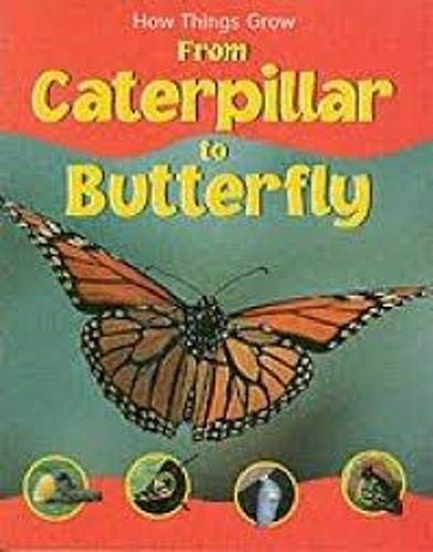9781844582556: How Things Grow from Caterpillar to Butterfly