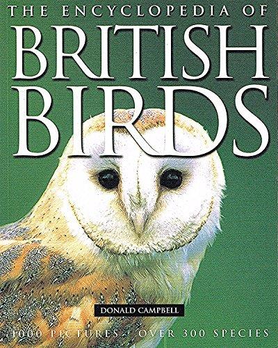 9781844610037: The Encyclopedia of British Birds
