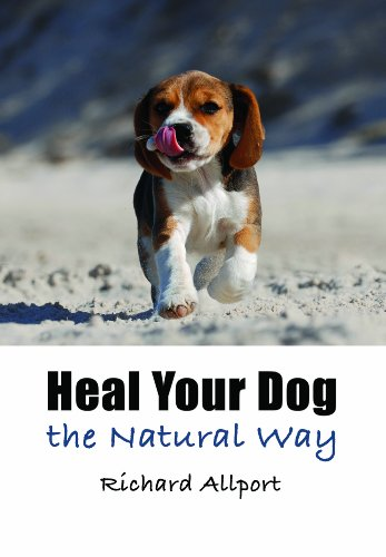 9781844681105: Heal Your Dog the Natural Way