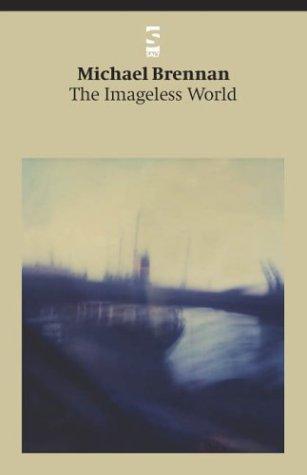 9781844710058: The Imageless World (Salt Modern Poets)