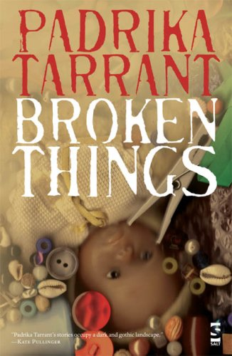 9781844713431: Broken Things (Salt Modern Fiction)