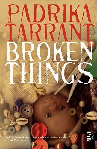 9781844714094: Broken Things (Salt Modern Fiction)