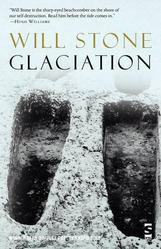 9781844715473: Glaciation (Salt Modern Poets)