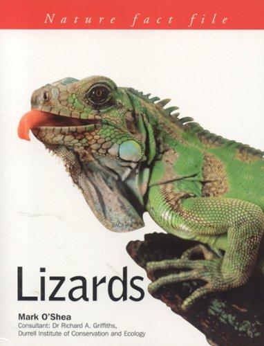 9781844761593: Nature Factfile: Lizards (Nature Fact Files)