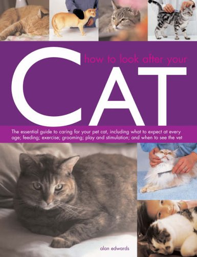 9781844762439: How to Look After Your Cat
