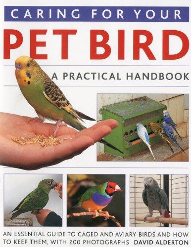 9781844766963: Caring for Your Pet Bird: A Practical Handbook