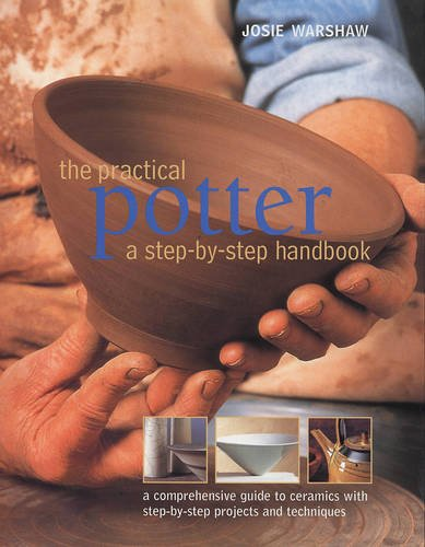 9781844769056: The Practical Potter