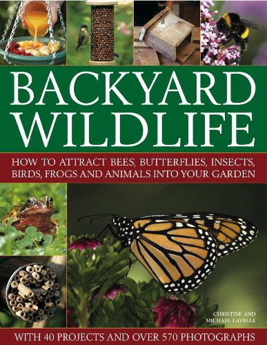 9781844769148: Backyard Wildlife: How to Attract Bees, Butterflies, Insects, Birds, Frogs and Animals into Your Garden