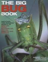 9781844770465: The Big Bug Book: Beetle, Bugs, Butterflies, Moths, Insects and Spiders
