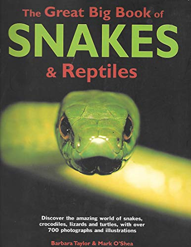 9781844774463: Great Big Book Snakes & Reptiles