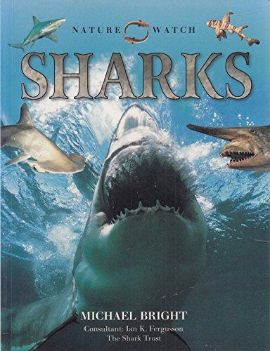 9781844776924: Nature Watch Sharks