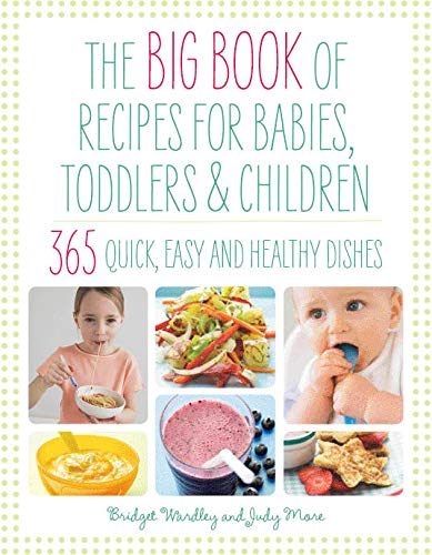 9781844830367: The Big Book of Recipes for Babies, Toddlers & Children (The Big Book Series)