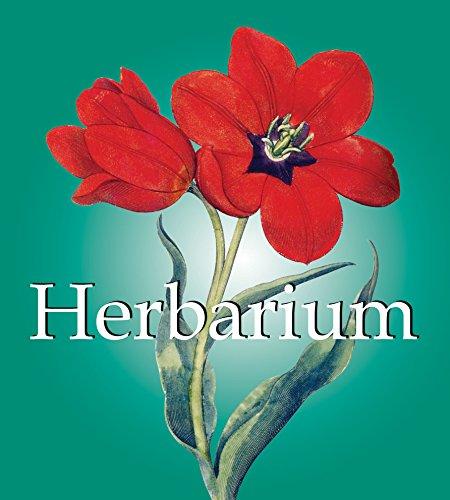 9781844845996: Herbarium (Mega Square Collection)