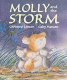 9781845061173: Molly and the Storm