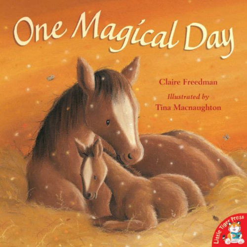 9781845064570: One Magical Day