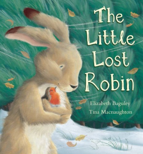 9781845065638: The Little Lost Robin