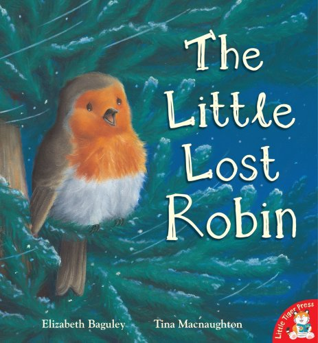9781845065645: The Little Lost Robin