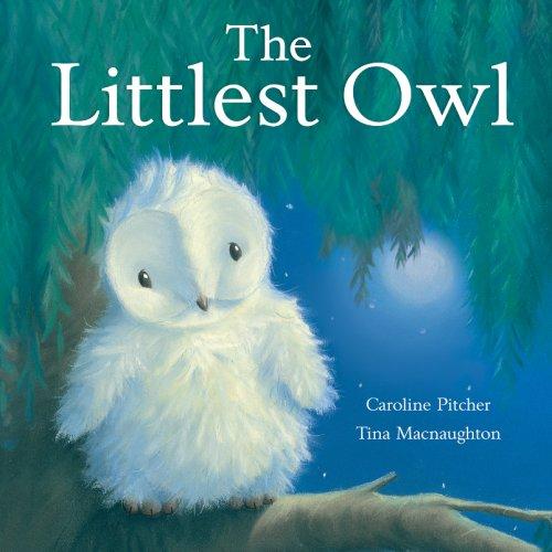 9781845066215: The Littlest Owl