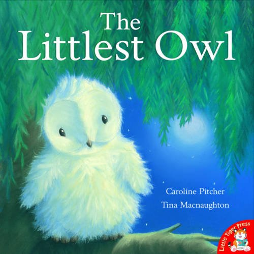 The Littlest Owl: Pitcher, Caroline