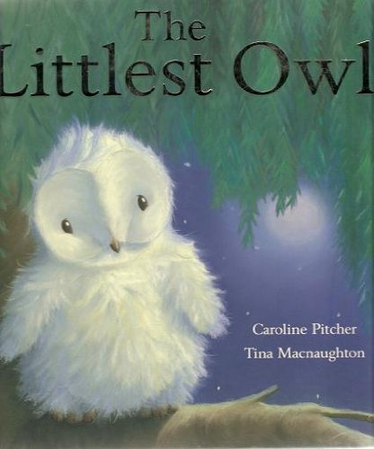 9781845067328: The Littlest Owl