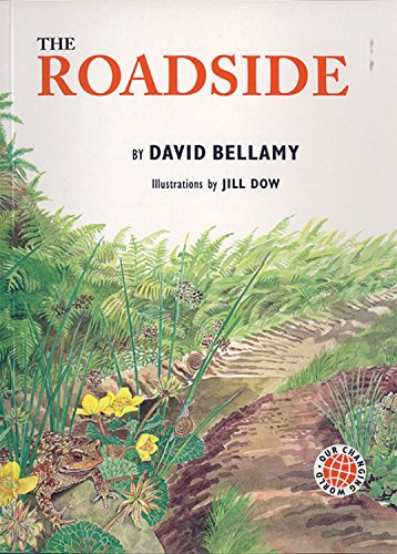 9781845072193: Our Changing World: The Roadside