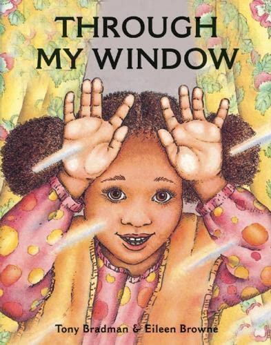 9781845078935: Through My Window