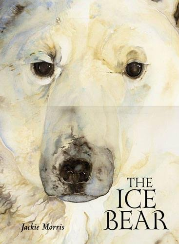 9781845079680: The Ice Bear