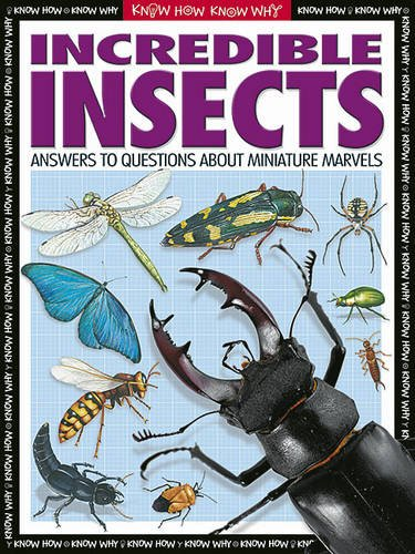 9781845101886: Incredible Insects (Know How, Know Why)