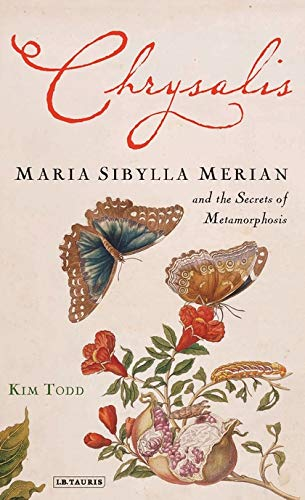 9781845114312: Chrysalis: Maria Sibylla Merian and the Secrets of Metamorphosis