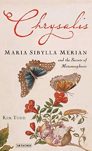 9781845114312: Chrysalis: Maria Sibylla Merian and the Secrets of Metamorphosis