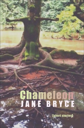9781845230418: Chameleon: Short Stories